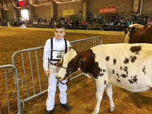 Mason Bellmon with his Ayrshire heifer at State Fair in Dallas.
